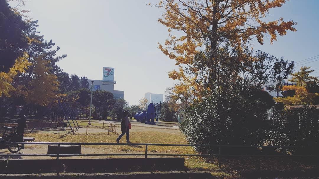 千葉市花見川区幕張町の幕張公園の紅葉